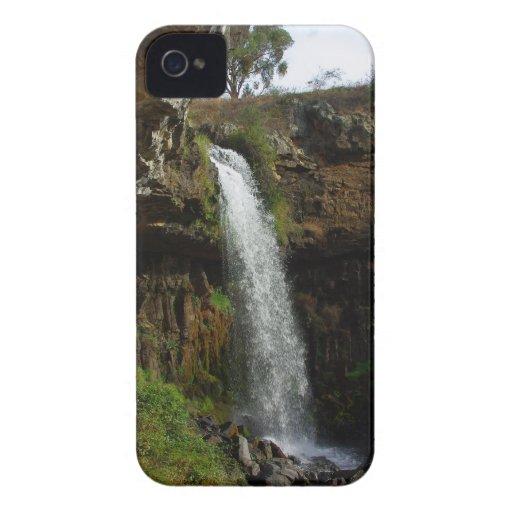 Mañana brumosa en el alto país del Victorian iPhone 4 Protector