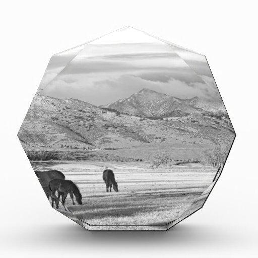 Mañana BW del país de Colorado de la montaña rocos
