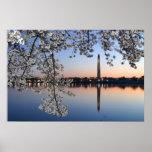 Mañana de la primavera del monumento de Washington Impresiones