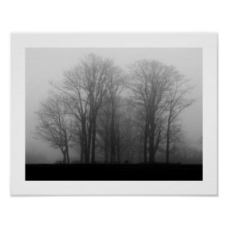 Mañana de niebla poster