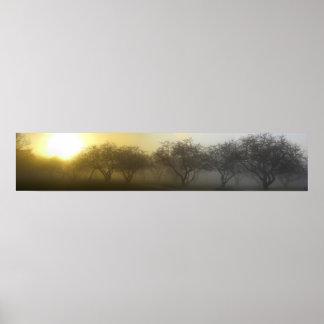 Mañana de niebla panorámica poster