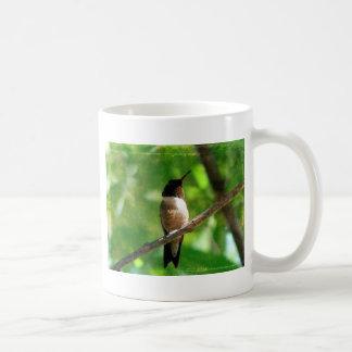 Mañana del colibrí taza de café