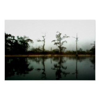 Mañana del pantano de Luisiana Impresiones
