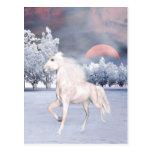Mañana mágica del unicornio tarjetas postales
