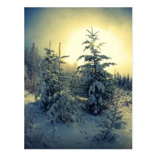 Mañana quebradiza del invierno postales