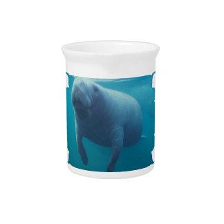 manatee-10 drink pitchers