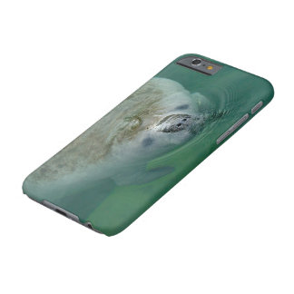 Manatee Close Up Barely There iPhone 6 Case