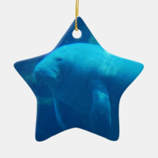 Manatee Floating Ornament