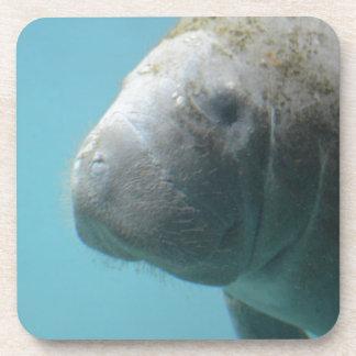 Manatee grande subacuático posavasos de bebidas