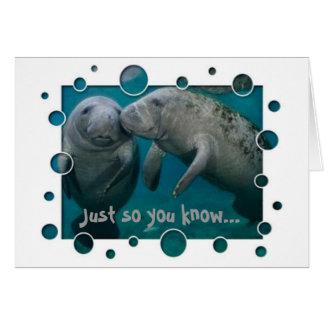 Manatee Love Valentine's Day Greeting Cards