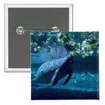 Manatee, Lowry Park Zoo, Tampa Bay, Florida, U.S.A 2 Inch Square Button
