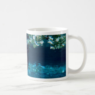 Manatee, Lowry Park Zoo, Tampa Bay, Florida, U.S.A Coffee Mug