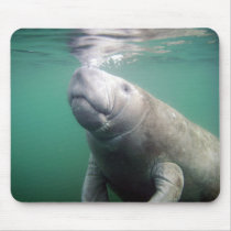 Manatee Mouse Pad