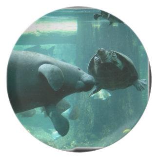 manatee N turtle_10x10 Platos De Comidas