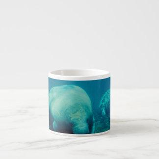 Manatee Photo Specialty Mug Espresso Cups
