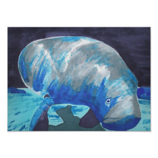 Manatee Poster