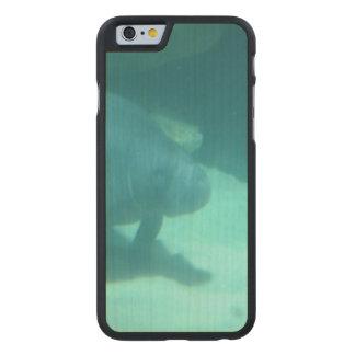 Manatee que flota en el suelo marino funda de iPhone 6 carved® de arce