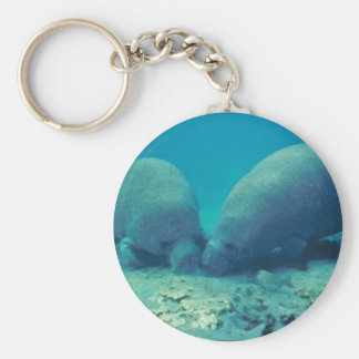 Manatee Rooting in Sand Keychain