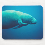 Manatee Scratching Mouse Pad