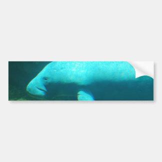 Manatee Swimming Bumper Sticker Car Bumper Sticker