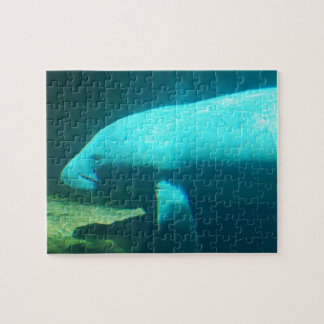 Manatee Swimming Puzzle