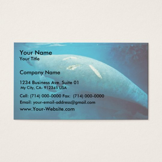 Manatee with Scar Business Card