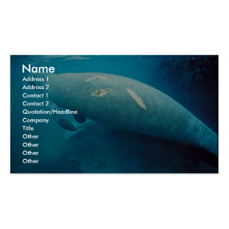 Manatee with Scar Business Card Templates