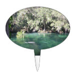 Manatees at Blue Springs Cake Topper