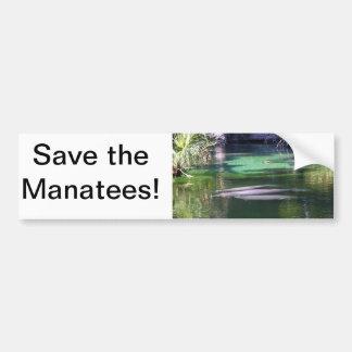 Manatees Car Bumper Sticker