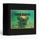 Manatees de la Florida