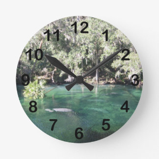 Manatees en Blue Springs Relojes