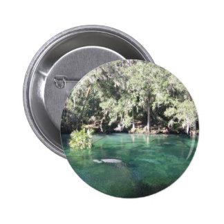 Manatees en el botón de Blue Springs Pin