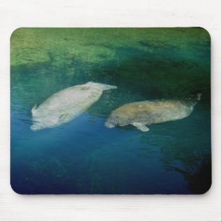 MANATEES MOUSE PAD