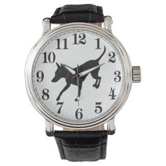 Manchester Terrier Watch