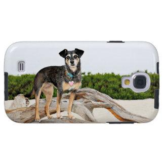 Manchester Terrier X - Jordan - Derr Galaxy S4 Case