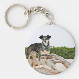 Manchester Terrier X - Jordan - Derr Keychain
