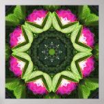Mandala color de rosa salvaje de Lotus Impresiones