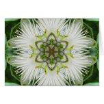Mandala de la flor de la pasión tarjeta de felicitación
