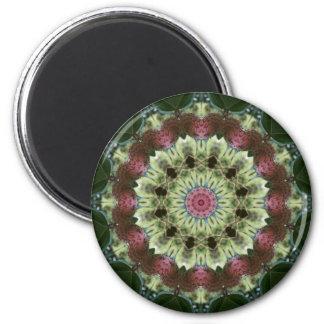 Mandala de la vaina de la semilla de la magnolia imán