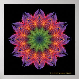 Mandala de Lotus del fuego Póster