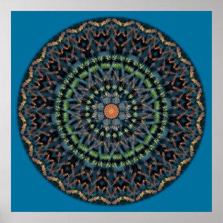 Mandala de Vera del áloe Póster