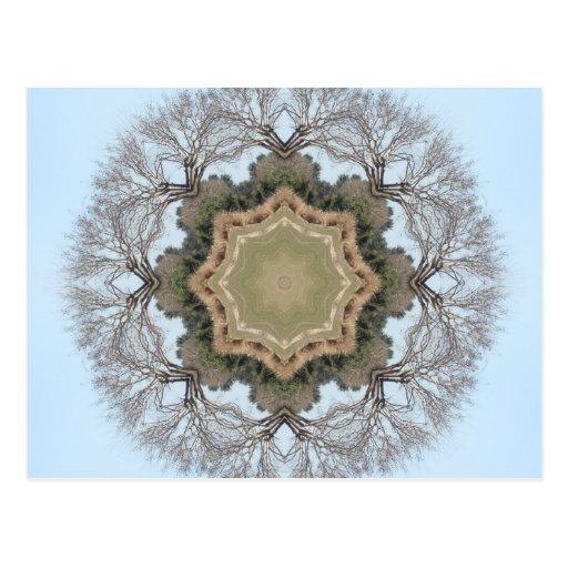 Mandala del árbol tarjeta postal