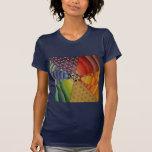 mandala del arco iris camiseta