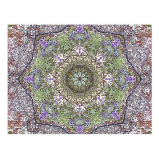 Mandala del bosque del otoño de los Wildflowers Postal