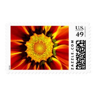 Mandala floral/tamaño S/M/L Sellos