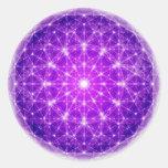 Mandala llena de D'Light Etiqueta
