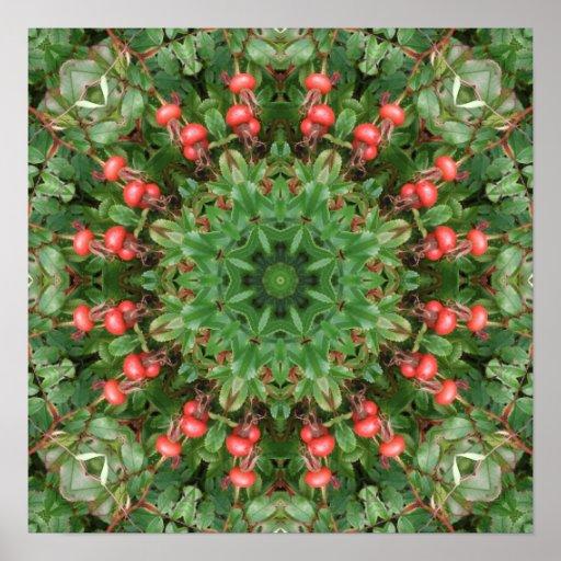 Mandala roja de las bayas de los escaramujos póster