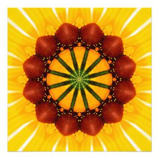 Mandala - Susan Negro-Observada Arte Fotografico