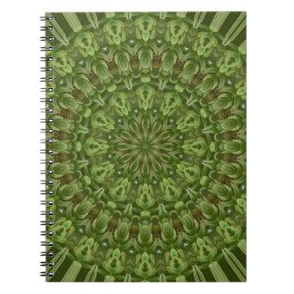 Mandala verde 4 de la anémona libreta