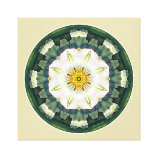 Mandalas for a New Earth, No. 5 Wrapped Canvas